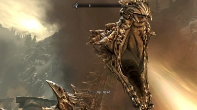 The Elder Scrolls 5 Skyrim Legendary Edition
