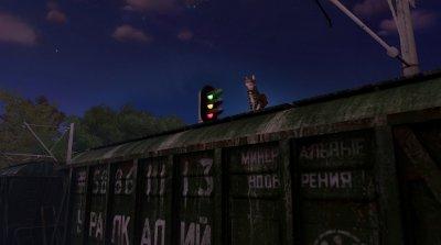 Max and Maya Cat simulator